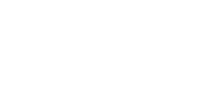 little bird studio logo